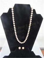 Monet Necklace & Earring Set
