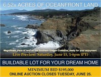 Oceanfront Auction Gold Beach Min. Bid $195,000