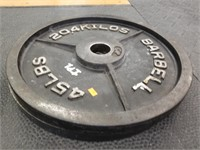 Pair of 45 lbs. Barbell Plates