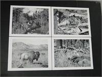 Four Wildlife Prints by David Knott