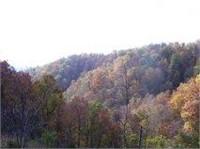 70 acres over looking Cumberland River in Kentucky