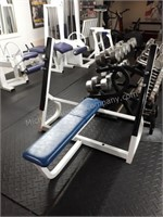 American Fitness Gym Equipment Auction