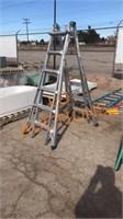Werner Collapsible Aluminum Ladder