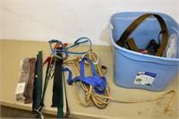 Horse Halter, Whips, Brushes, etc.
