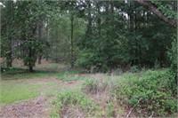 Lot 103 Northlake Estates, Sylvester, GA, 31791