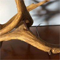 Stag Horn Lamp
