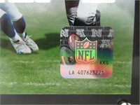 """NFL Class of 2016 Pro Football Hall of Fame 15"""" x"""