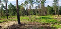 16+/- Acres on Turkey Ridge in Swainsboro, GA