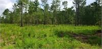 Estate Size Lots For Sale on Turkey Ridge (Swainsboro, GA)