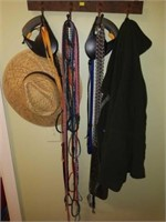Entire Contents of Rack-Leashes, Hat, Jacket, Etc