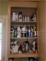 Cabinet FULL of Stains, Paints, Sprays, Brushes