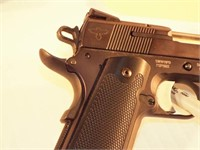 Smith & Wesson 1911PD semi auto, case