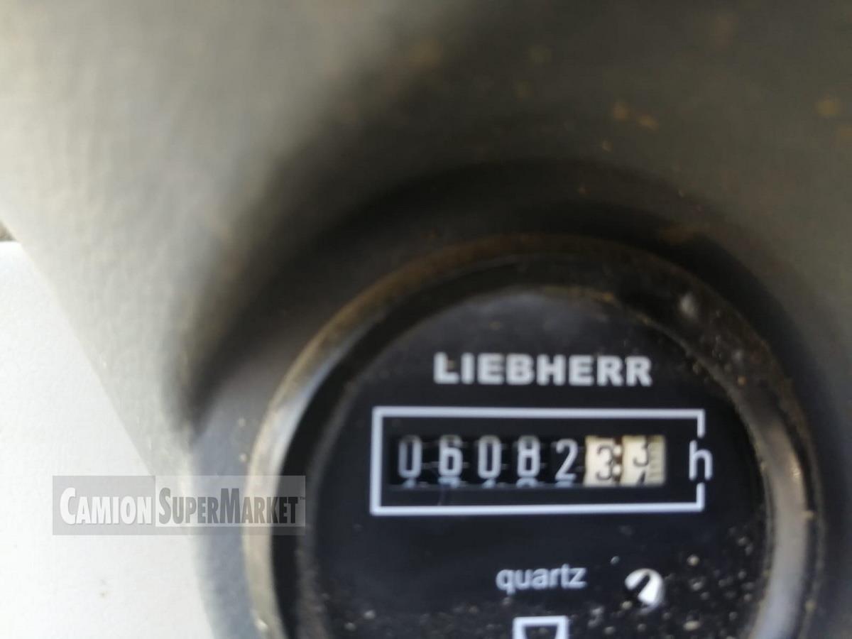 Liebherr A309 Uzywany 2004