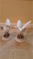 2 White Doves by Andrea