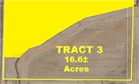 Tract 3: 16.6+/- Acres Farmland, Mostly Tillable