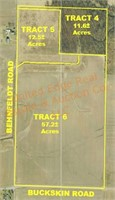 Tract 4: 11.6+/- Acres of woods