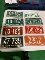 Lot of 40 New Brunswick License Plates
