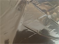 NIB RACHEL RAY COVERED ROASTING PAN