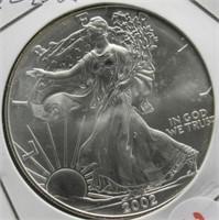 2002 One Ounce Fine Silver Eagle.