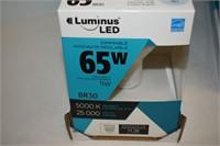 (6) LED 65W Daylight Light Bulbs