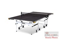 Joola Rally TL-300 Table Tennis Table