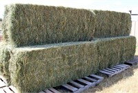 6 Bales 3x3x8, 2018 Colorado, 70% Grass/30% Alfalfa (barn stored) view 2 from north