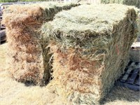 2 Bales 3x4x8 2018 Colorado Grass (barn stored) view 2