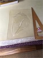 Plexiglass seashell