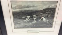2 Hunting Dog Pictures Y15E