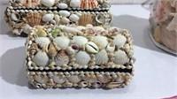 Seashell Treasure Boxes & Packaged Shells T13A