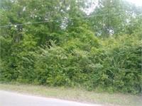 4700 Blk Richardson Road (Reserve Bid $11400.00)