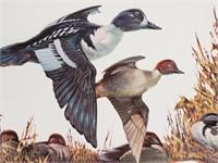 3D Sweney Ducks Artwork