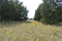 55 ac m/l Recreational Land with Home & Barn
