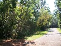 16505 NORTH SHORE LANE (Reserve Bid: $33075.00)