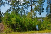 Smith Lake Lot #14 - Bear Branch Cove Subdivision