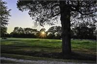 Bowie County Texas Land Auction 228 Acre Cattle Farm in De K