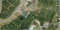 BANKRUPTCY AUCTION THREE LOTS