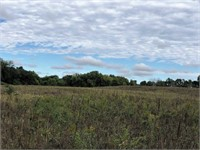 100 Acres m/l Cropland & Timber