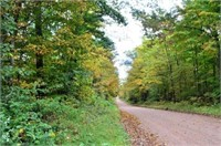 120 Acre Marathon County WI Land Auction