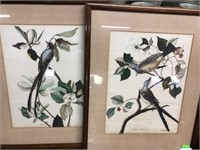 Complimentary bird watercolors signed B. Dudley