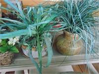 (3) Artificial Plants + Bird House