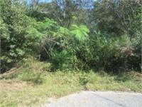 708 Escambia Avenue (Reserve Bid $10,389)