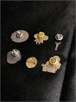 Set of 6 different pins