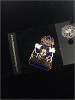 5 decorative pins