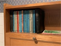 LOT OF BOOKS / BIBLES