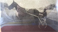 Vintage Framed Harness Racing Photograph 15x13""