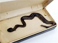Vtg Howell And Shreeck Snake Gag Jewelry Box