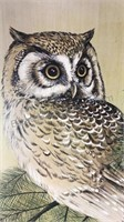 "Signed Framed Owl Print 25x31"" no glass in frame"