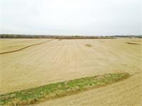 Christian County Farmland Online Auction Mt Auburn