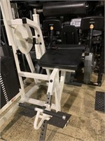 life Fitness Low Back Extension Selectorized